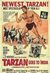 Affiche du film Tarzan Aux Indes