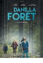 L'affiche du film Dans la forêt