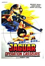 Affiche du film SOS Jaguar : opération casseurs
