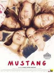 L'affiche du film Mustang