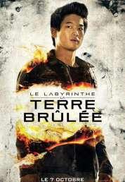 Affiche du film Le Labyrinthe : La Terre brûlée