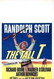 Affiche du film L'homme de l'Arizona