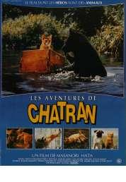 Affiche du film Les aventures de chatran