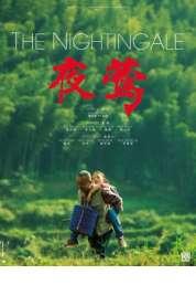 Affiche du film Le Promeneur d'oiseau