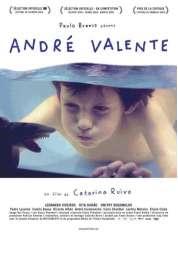Affiche du film Andre Valente