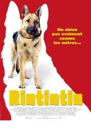 Affiche du film Rintintin