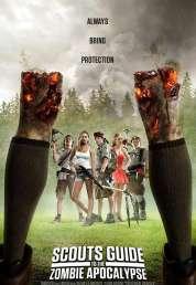 Affiche du film Manuel de survie à l'apocalypse zombie