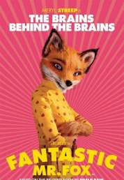 Affiche du film Fantastic Mr. Fox