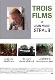 Affiche du film Le Genou d'Artémide