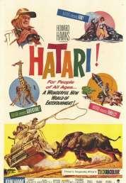 Affiche du film Hatari