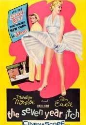 L'affiche du film Sept ans de reflexion