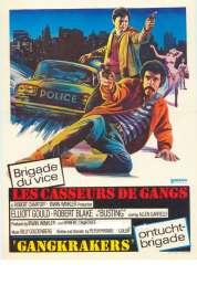 Affiche du film Les Casseurs de Gangs