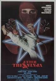 Affiche du film L'implacable Ninja