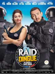 L'affiche du film Raid Dingue