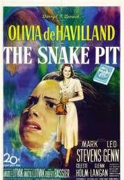 Affiche du film La Fosse Aux Serpents