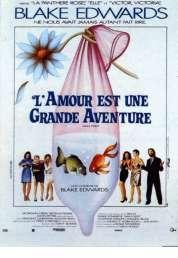 Affiche du film L'amour est Une Grande Aventure