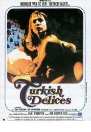 Affiche du film Turkish delices