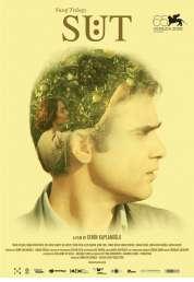 Affiche du film Milk