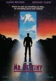 Affiche du film Monsieur Destinee