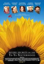 Affiche du film Les divins secrets