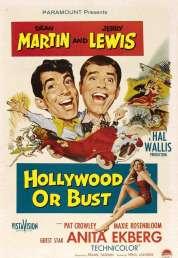 Affiche du film Un vrai cinglé du cinéma