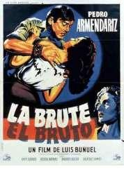 Affiche du film L'enjoleuse