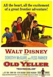 Affiche du film Le Fidele Vagabond
