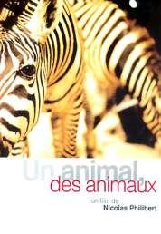 Affiche du film Un animal, des animaux