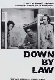 L'affiche du film Down by law