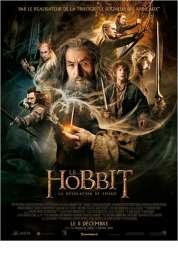 L'affiche du film Le Hobbit : la Désolation de Smaug