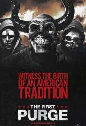 L'affiche du film American Nightmare 4 : Les Origines
