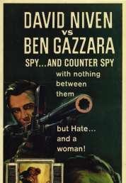 Affiche du film L'arsenal de la Peur