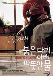 Affiche du film De l'eau tiède sous un pont rouge