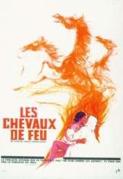 L'affiche du film Les chevaux de feu