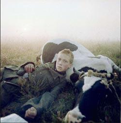 Requiem pour un massacre, le dvd