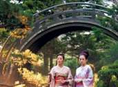 Photo du film Mémoires d'une geisha