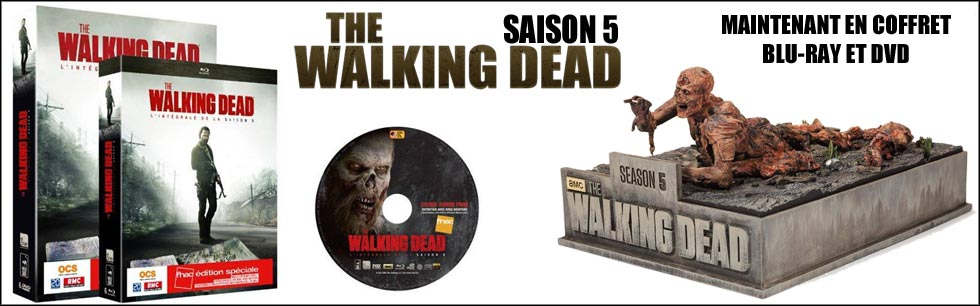 The Walking Dead Saison 5, en coffret DVD et Blu-ray