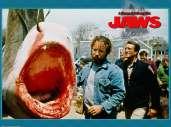 Fonds d'écran du film Les Dents de la Mer 2
