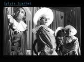 Fonds d'écran du film Sylvia Scarlett